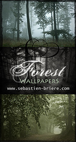 Widescreen wallpapers, Forest