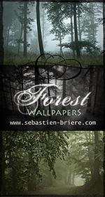 sb_wallpaper1