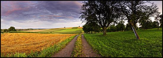 Pays de Hanau - Alsace ©Sébastien Brière
