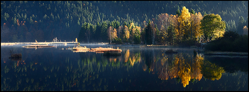 Tourbière de Lispach en automne, Vosges - Alsace ©Sébastien Brière