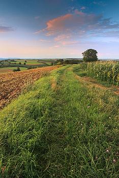 Soir d'été, Alsace©Sébastien Brière