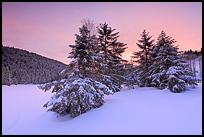 Tourbière de Lispach sous la neige, Vosges©Sébastien Brière