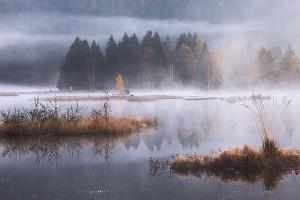Pel_172_02-10-2011-037